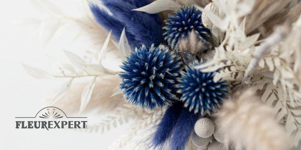 Douceur réconfortante de ces tons bleutés accompagnés de pampa gris 💙  Nos inspirations d'hiver sont à (re)découvrir dans notre nouveau CATALOGUE SÉCHÉS & PRÉSERVÉS 2020 disponible maintenant » https://t.co/4Kp8kK4JJd  #Fleurexpert #Florist #Fleuriste #Quebec #Fleurs #Pampa https://t.co/z1Mv2ACsbG
