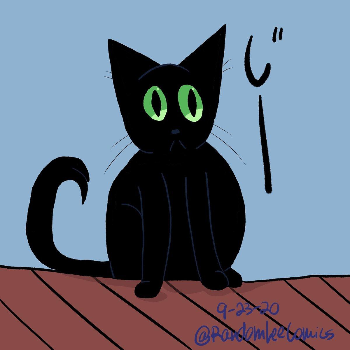 "Nosy likes to stare 🐱 (""Jiii~"")#digitalart #art #illustration #funny #digitalillustration #digital #sketch #digitalpainting #procreate #draw #drawing #illustrator #wednesday #doodle  #cartoon #cute #kawaii #sketchbook #manga #anime #chibi #comic #sketching #comicstrip #pets #cat https://t.co/ORYEdT4Un0"