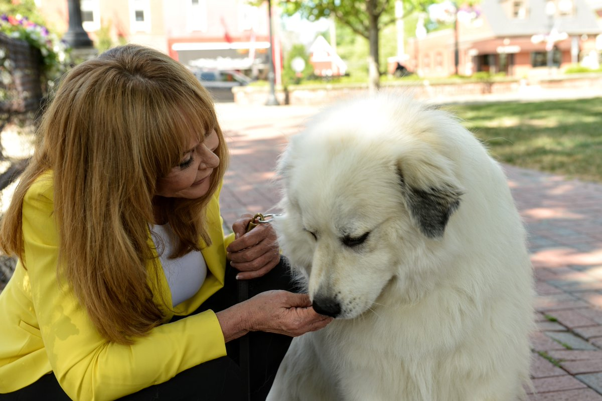 [NEW EPISODE] - How To Pick The Perfect Pet for Your Family! Featuring Dr. Carol Osborne @carolonpets You have to listen to this before you get a new pet: https://t.co/gFfkM84AIz #pets #kids #moms #parenting #dogs https://t.co/rRyfzdBKGJ