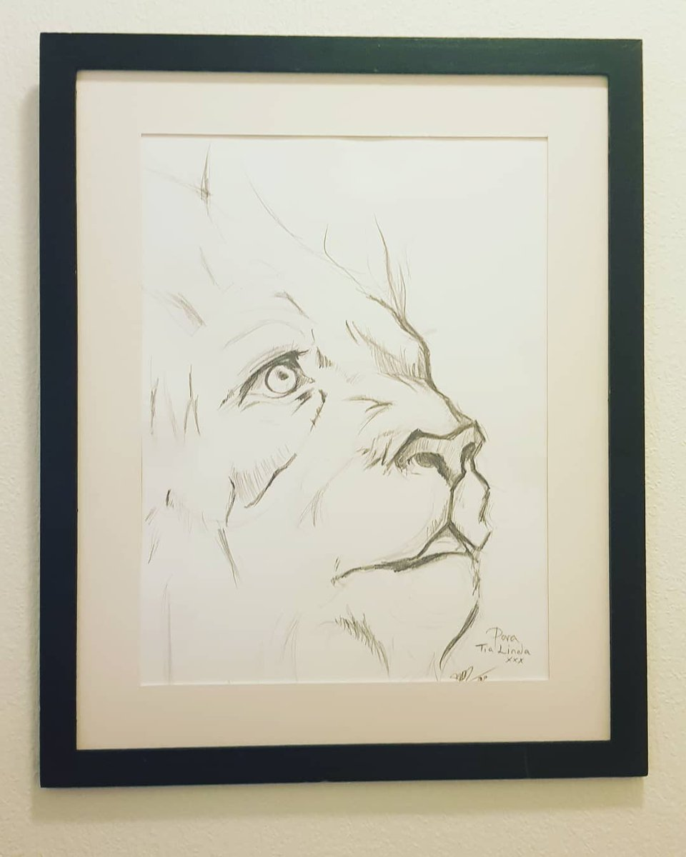 My aunt wanted a specific sketch drawing , originally the idea was from pintrest , took about 20-30 min 🌺 ♡ ♡ ♡ #sketching #lion #draw #sketch #drawing #art #sketch_daily #animal #pencildrawing #creative https://t.co/3ufx9fKgsk