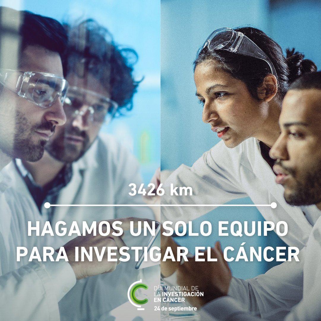 24 de septiembre Dia Mundial de la Investigación contra el cáncer. #WorldCancerResearchDay La investigación  es nuestra esperanza y  nuestro futuro Necesitamos #másinvestigaciónparamásvida https://t.co/59w2juiMrJ