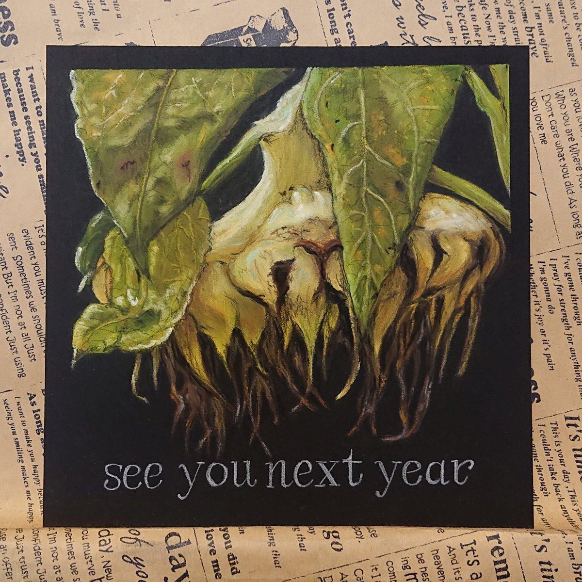 『see you next year』🎵枯れたヒマワリ🌻を描いてみました🎵#チョークアート #オイルパステル