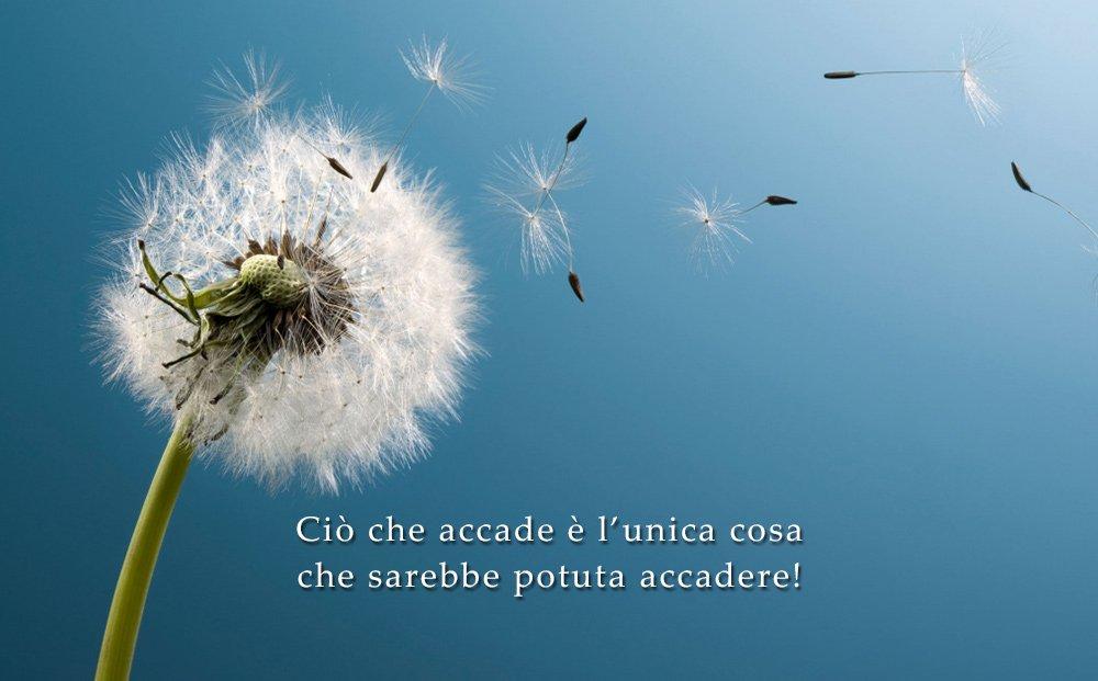 #InCheCosa