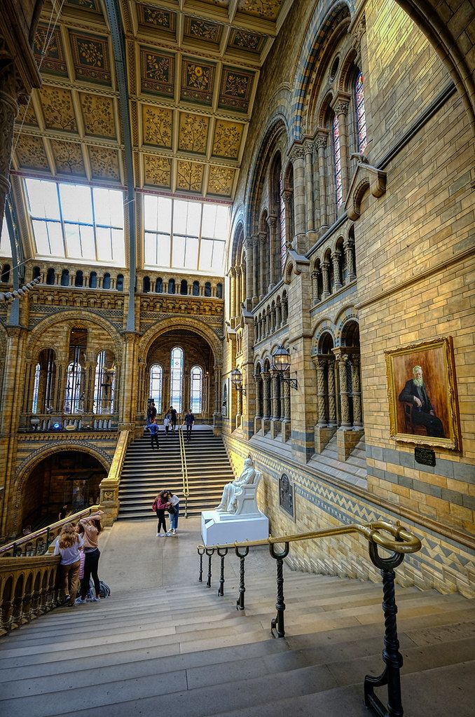 Exploring the Natural History Museum in London, England https://t.co/9ElbuM22do #photography #travel #london #england #UnitedKingdom #museum #europe https://t.co/iY7lVs4ijq