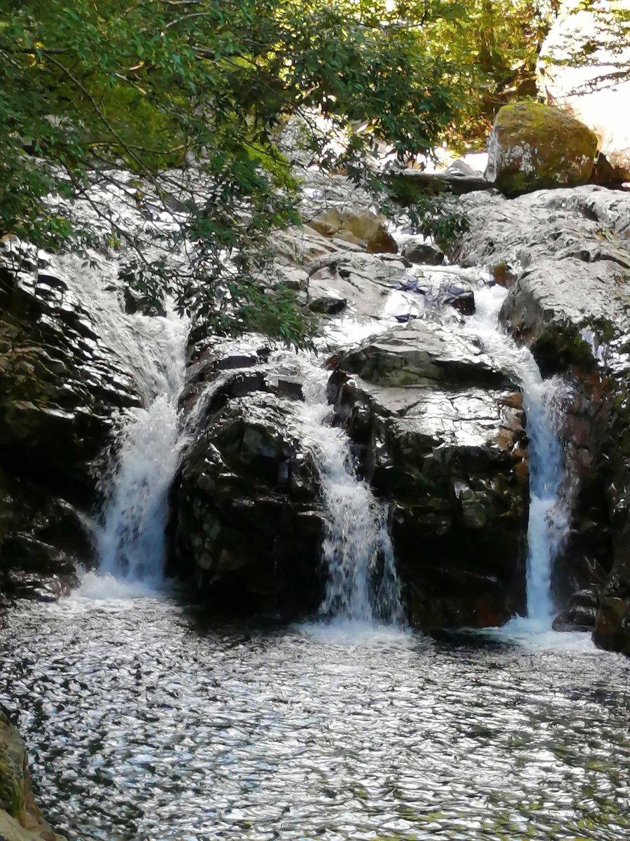 水流が3つに分かれている。思わず崇徳院の「瀬をはやみ 岩にせかるる 滝川の われても末に あはむとぞ思ふ」を思い出す。 #崇徳院 #せせらぎ #水流 https://t.co/vxtITEctqa