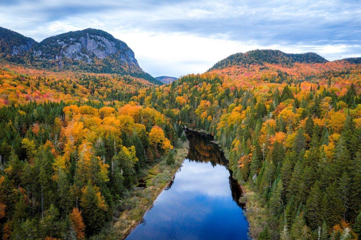 C'est la #SemaineNationaleDesForêts,  alors nous  devons célébrer nos belles forêts canadiennes!  Cette année, la #SemaineNationaleDesForêts célèbre son 100e anniversaire! 🌳🌲🎉 https://t.co/L1piijTp82