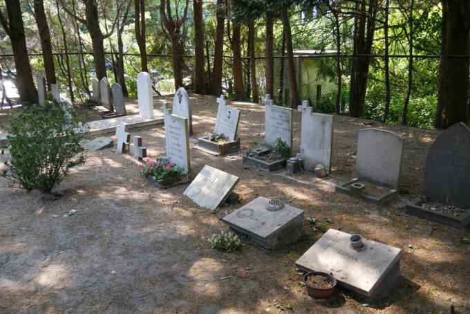 Weinig draagvlak in politiek voor behoud begraafplaats Dijkweg https://t.co/BjIUfeZNQT https://t.co/aq4PSqPdCi