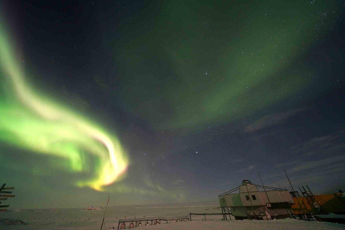 """""""火の鳥""""が昭和基地に!? オーロラを連続して撮影したら、輝く光の鳥が羽ばたいて星空へ飛び立っていくように見えました。(24日午前1時45分ごろ) #南極 https://t.co/WIjv6nrMro"""