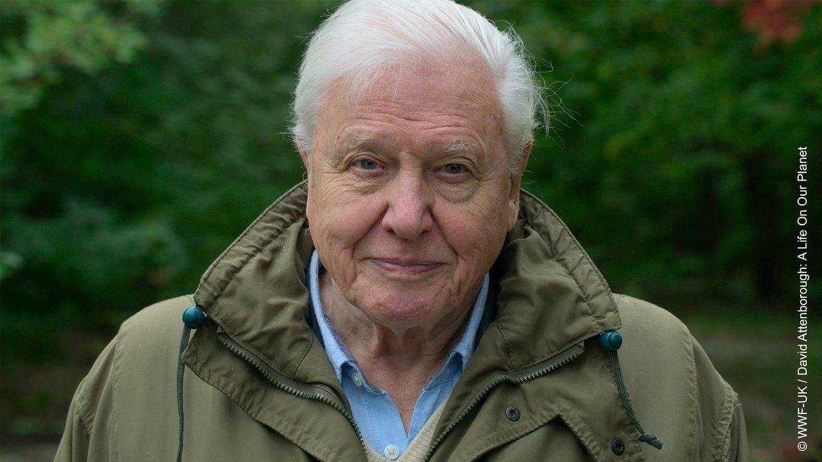 Sir David Attenborough has joined Instagram!!  https://t.co/U30QnRGAwK https://t.co/P3wyIV00f5