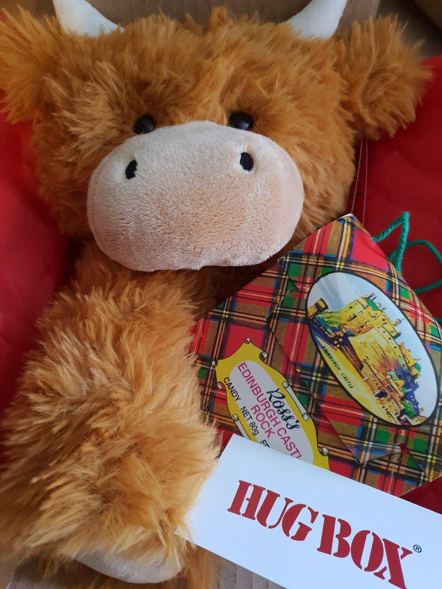 Highland Cow Hug Box ❤ 🏴  https://t.co/XXrxe1SQal  #gift #free #personalised #message #highland #cow #coo #scotland #scottish #hug #weehug #edinburgh #rock #giftforhim #smile #cuddle #happy #getwell #birthday #love #missyou #GetWell https://t.co/QsehSsawmU