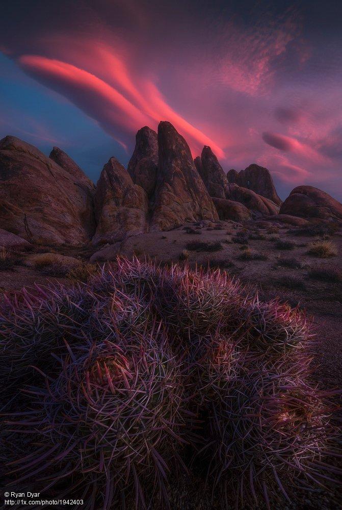 'Sleuth of Scintillance' by Ryan Dyar. https://t.co/KSfM2OgBe4 #landscape #landscapephotography #rocks #sunrise #hills #California #cactus https://t.co/x2BlHzK4OK