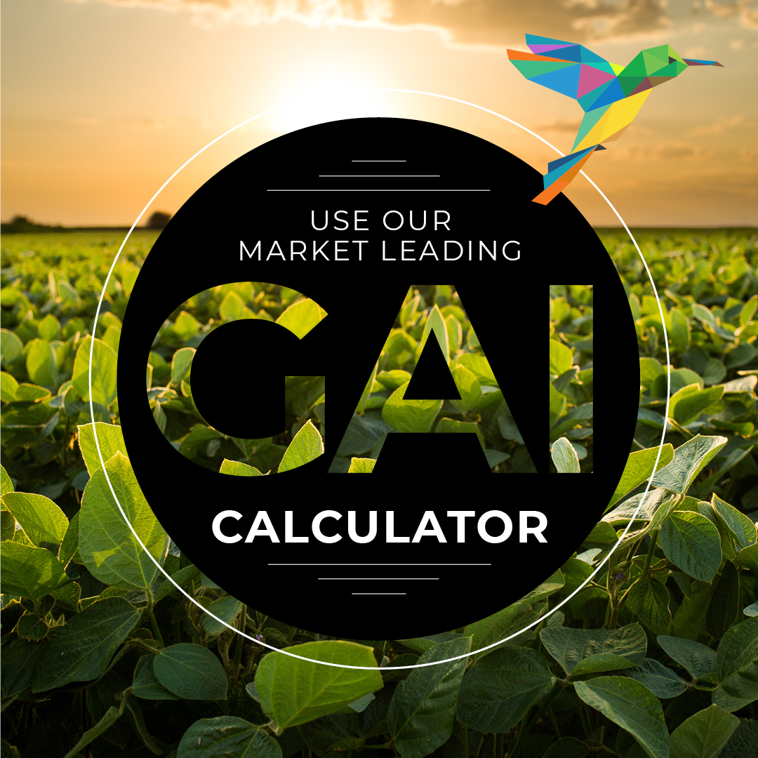 Hummingbird Technologies' model to measure and map the GAI of Oil Seed Rape is truly market-leading. It's based on sound science and extensively validated across the UK & Europe.  Our case study reveals more: https://t.co/RQ2TgU9zij  #GreenAreaIndex #GAI https://t.co/xYZCk5wpjR