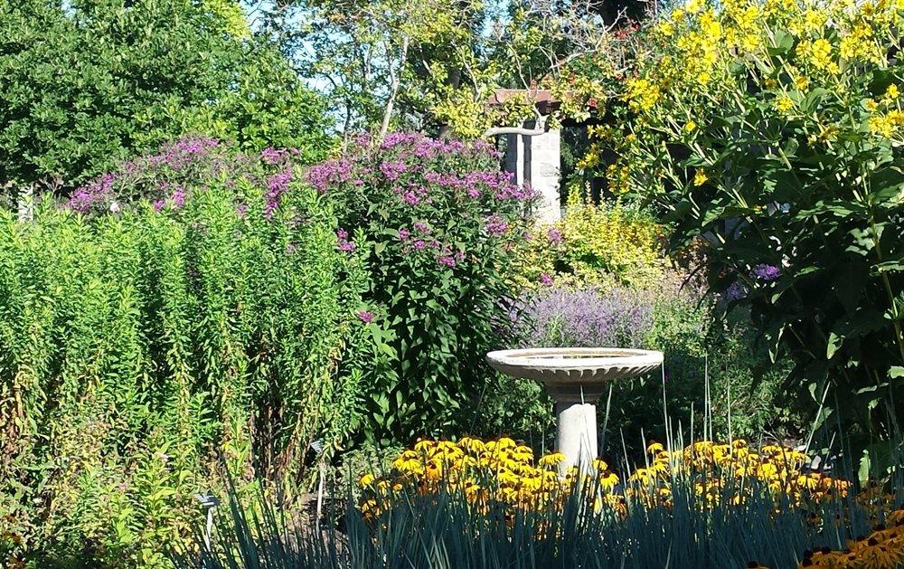 Quel charmant spectacle : un bain d'oiseaux au milieu du jardin fleuri    https://t.co/SuvymcmeKh    #oiseaux #bain #Jardin #botanique #Montréal #horticulture #fleurs https://t.co/HvfCjqmFAd