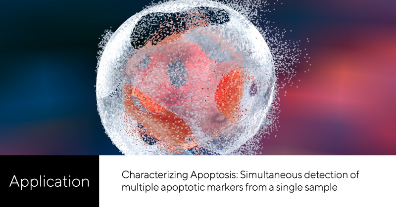 Characterizing the apoptotic process through simultaneous detection of multiple markers.   View the application here: https://t.co/M9F7xKDWFq  #flowcytometry #cytometry #assay #cellsorting #cellculture #apoptosis https://t.co/Gzl8crZgxT