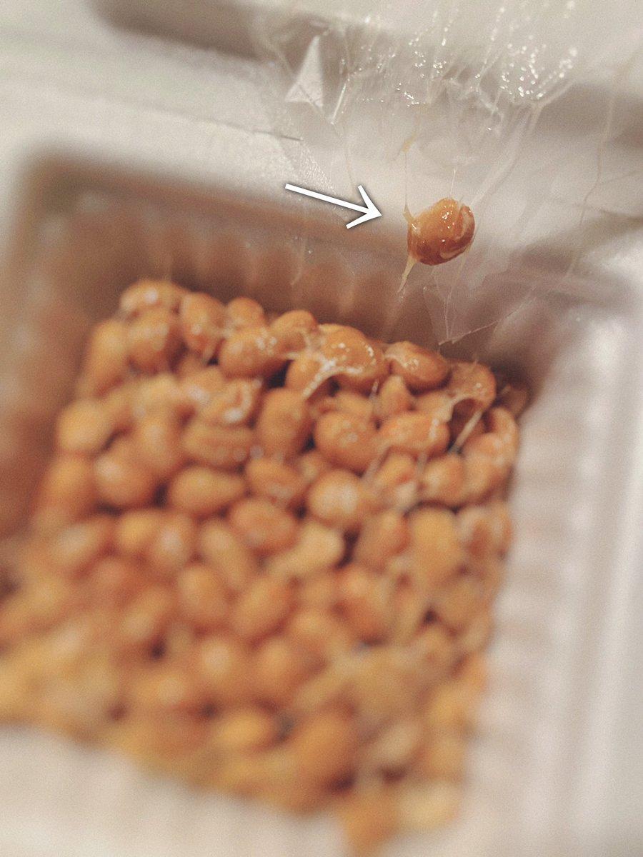 納豆あるある