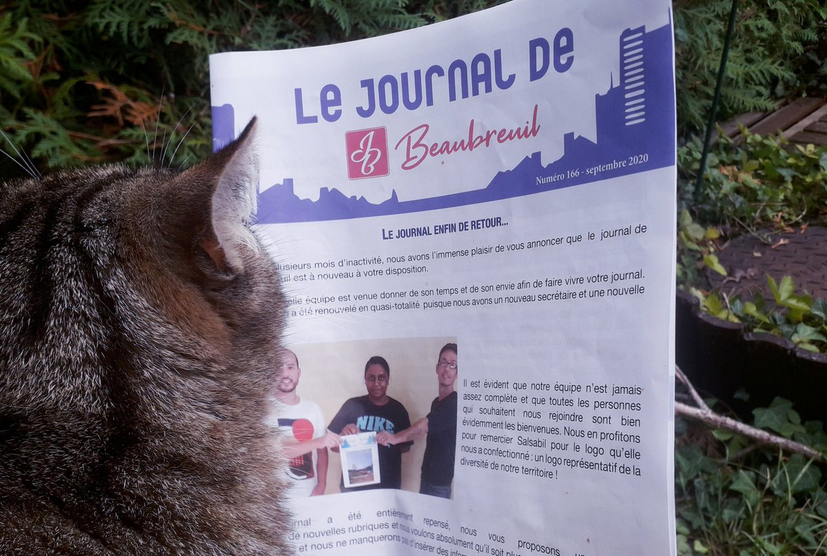 Le #journaldeBeaubreuil est de retour. Les #chats #Beaubreuil  l'ont trouvé dans la boîte aux lettres. Youpi! #Limoges https://t.co/o6THbHCBqz