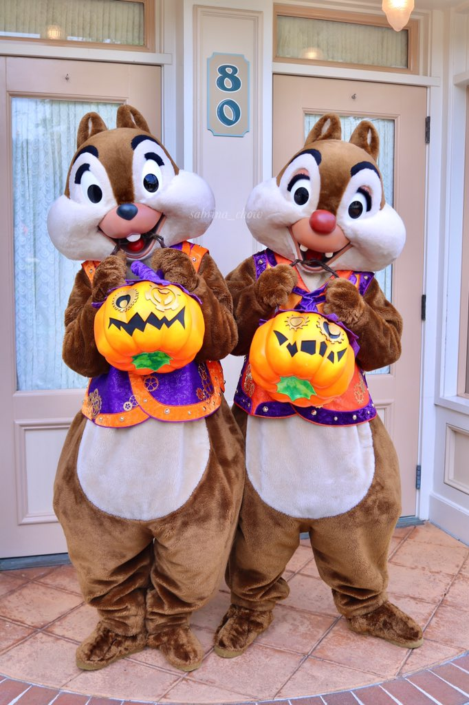 It's a pumpkin so I rather put it in my mouth or on my nose🎃. Wait what?!😯😂 #hkdl #disneyland #disney #chip #dale #チップ #デール #香港ディズニーランド #ディズニーランド #ディズニー https://t.co/x8ikt6XzsW
