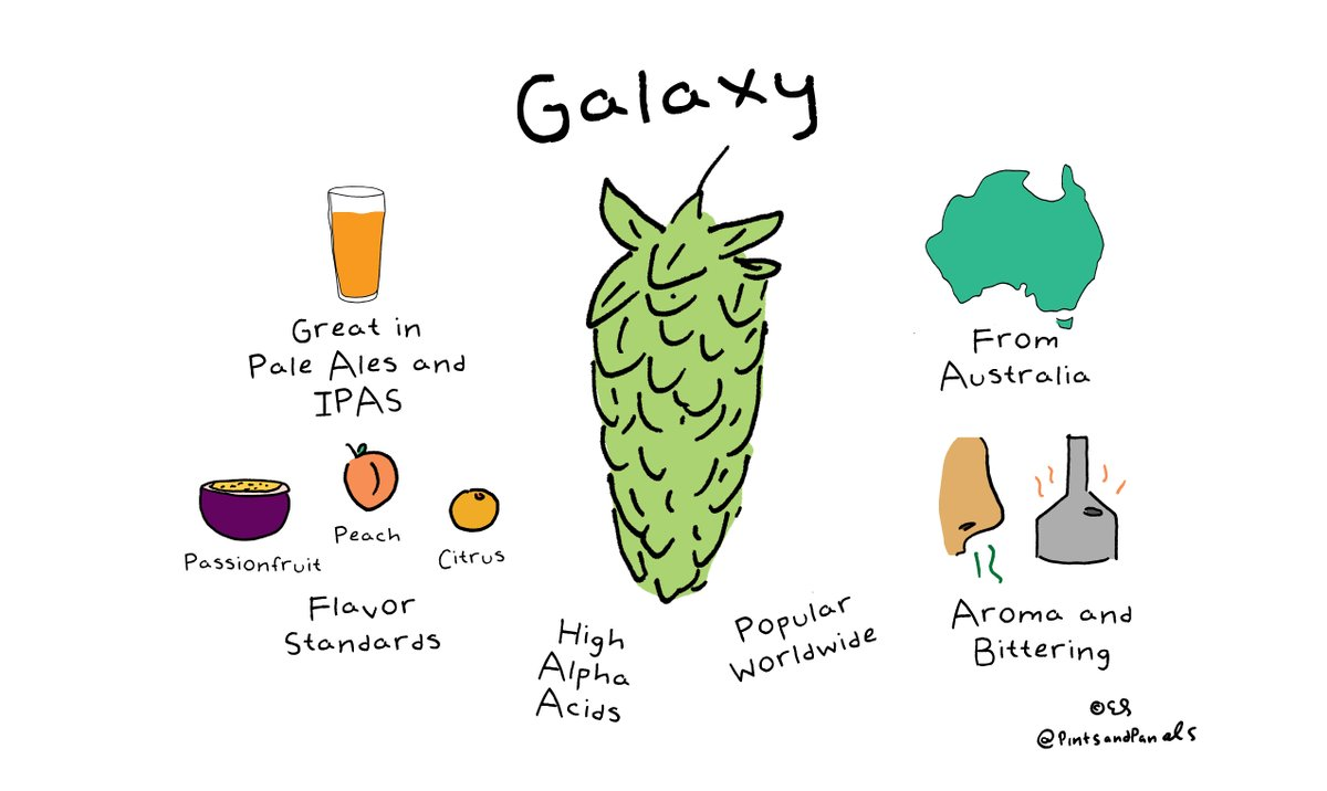 #HopVarietySimple-  the very popular Galaxy https://t.co/KIFFG2ctAw