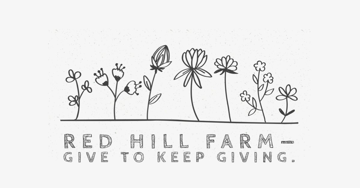 test Twitter Media - At Red Hill Farm, the farmers are working hard on the crops. They just fixed a water pump and now want to get ready to plant some blueberries for future years.Can you help by contributing? Your gifts will be remembered for years to come. https://t.co/uYijJkHZuq #Blueberrygarden https://t.co/fq4fId6d7t