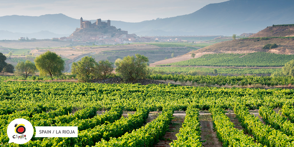 In #LaRioja, the #autumn is wine season 🍷. However there is a lot more to do than just grape harvesting. 🍇 Try a wine and tapas tasting, cultural visits, vineyard walks and more!  👉 https://t.co/bCXW2OOqTN  #BackToSpain #SpainWineRoutes https://t.co/Jq6HNQjqWg