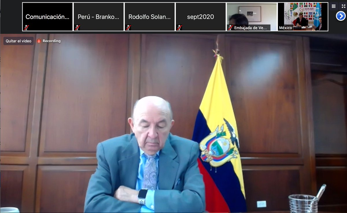 #Ahora El canciller @LuisGallegosEc participa en la XX Reunión de ministras y ministros de Relaciones Exteriores de la Comunidad de Estados Latinoamericanos y Caribeños CELAC, que se desarrolla de forma virtual. #DiplomaciaActiva https://t.co/vNbVr721o8