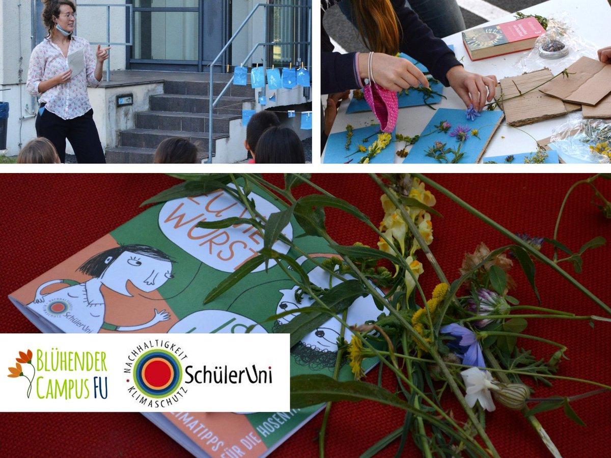 Die Schüleruni #Nachhaltigkeit + #Klimaschutz mit vielen spannenden Workshops geht zu Ende. Wir waren wieder dabei, diesmal zum Thema #Stadtnatur und Pflanzenvielfalt 🌷🌿  Die Schüleruni für 5. & 6. Klassen findet zweimal im Jahr an der @FU_Berlin statt: https://t.co/Ls70v5kytJ https://t.co/NXgDXVaKM6