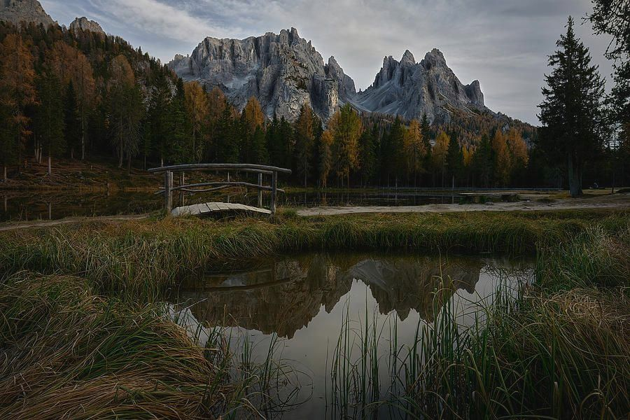 Art for the eyes! https://t.co/ug13d6qLEz #Italy #italianalps #Alps #landscapephotography #landscapelovers #ArtLovers #nature #TravelTuesday https://t.co/cfFRg93B7n