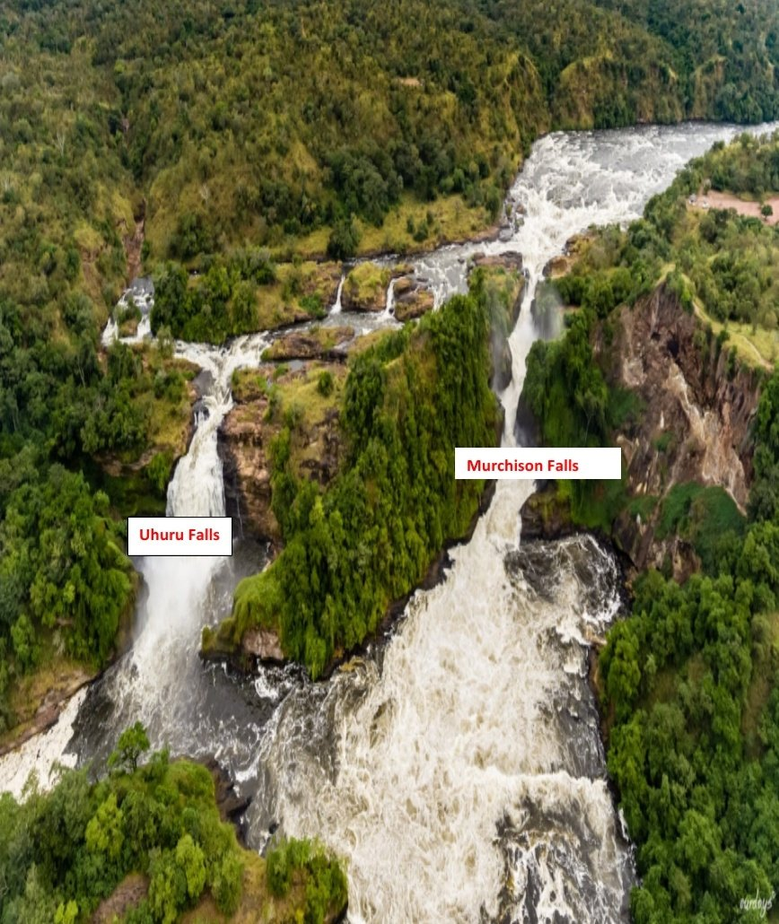 The Environment Committee at #Parliament has strongly rejected the proposal by Government to construct a hydro-power dam at Uhuru Falls in Murchison Falls.  #PlenaryUg  @ERA_Uganda @UgTourismBoard @nemaug #SaveMurchisonFalls.  📸Crd https://t.co/sCnaKfZz6q