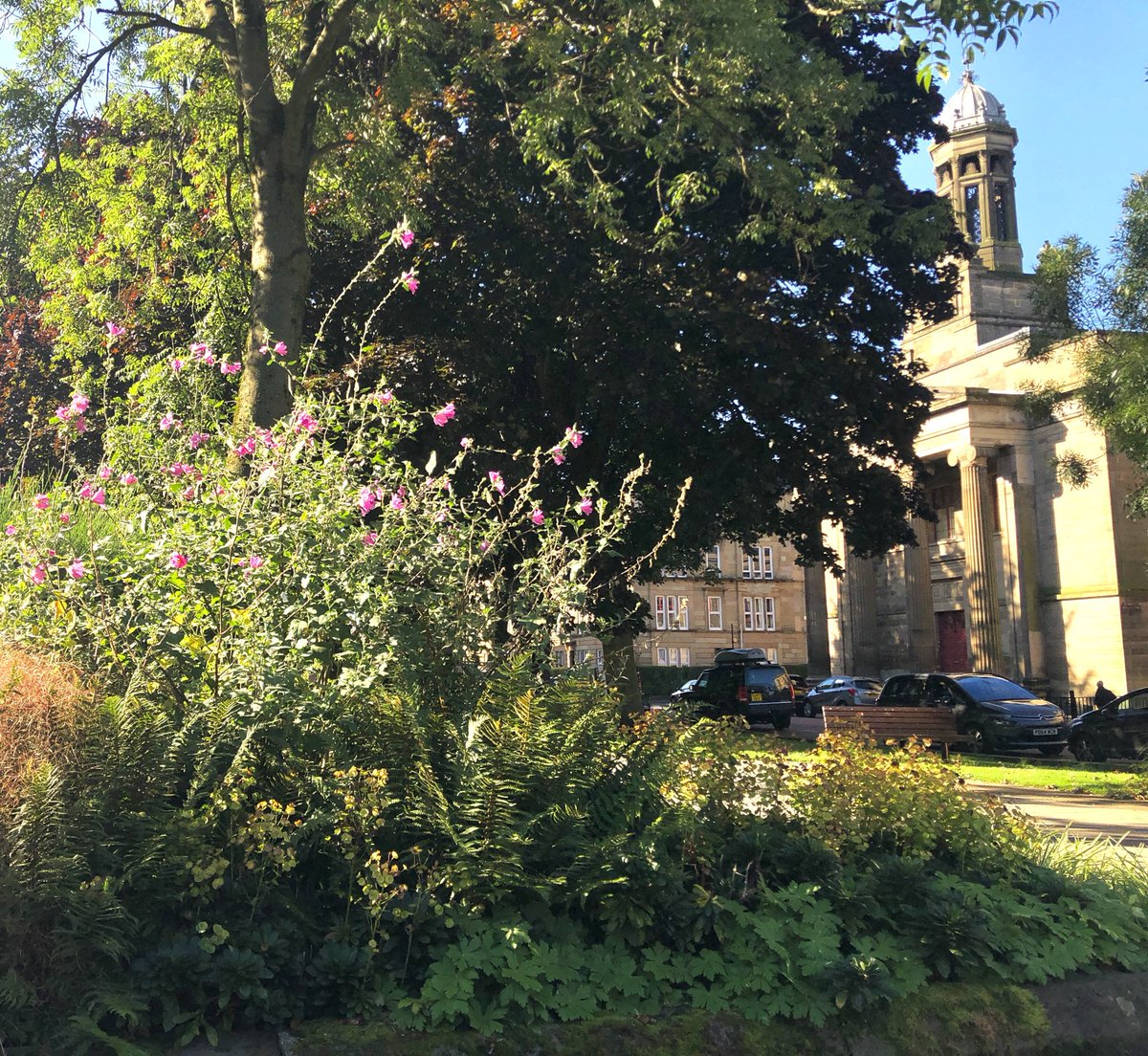 Community garden at Derby Street #Glasgow looking stunning today. A wee hidden gem just outside #Kelvingrovepark #Scotland #Community #Wellbeing #WestEnd #Architecture https://t.co/TDFp92GGK8