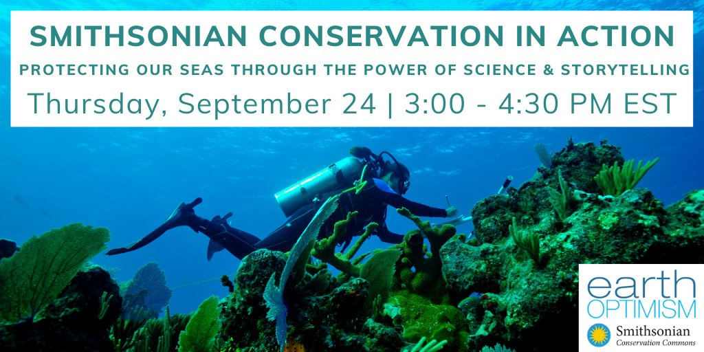Today at 3pm Eastern: Hear stories of #marine #conservation in action, with speed talks from marine biologists across the Smithsonian. Featuring @SERCfisheries Matt Ogburn and @SImarineGEO's Emmett Duffy! Sign up online to join: https://t.co/6PW90gXh25 https://t.co/C94AwImAgI