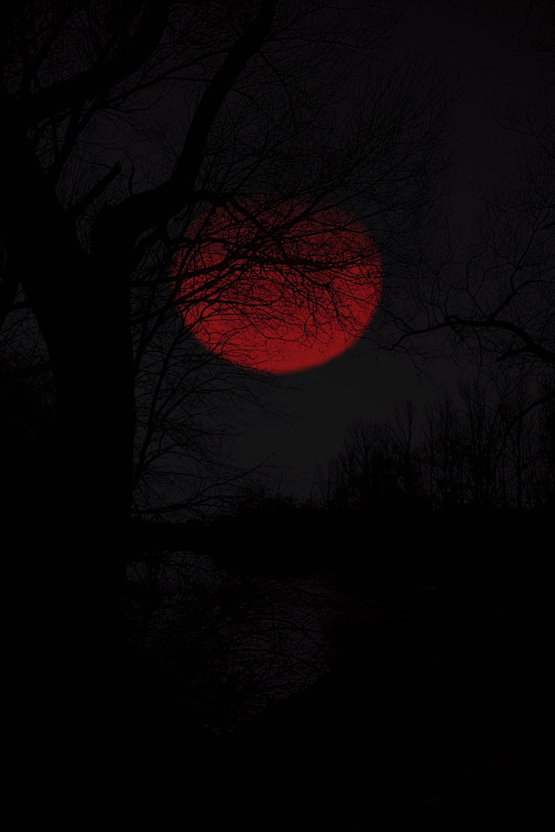 Blood moon.  Photography by frostklamm. https://t.co/DRoD9sTewG