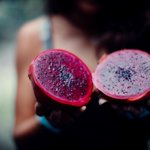 Image for the Tweet beginning: Discover exotic fruits on an
