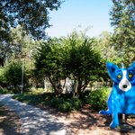 Image for the Tweet beginning: When you visit @NOLACityPark you'll