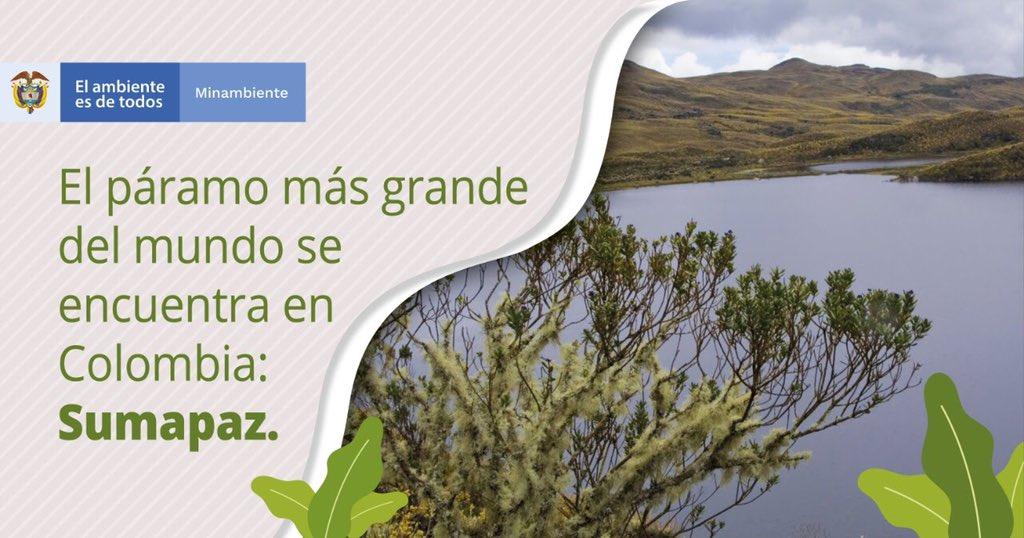¡El páramo más grande del mundo se encuentra en Colombia! Se trata del Sumapaz con un poco más de 315.065 hectáreas de hermosos paisajes y atractivos únicos. #ColombiaPaísDePáramos #UNGA75 #UNGA https://t.co/DJORz5OETO