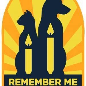 """Rest in Paws. 🐾💔🐾💔🐾💔🐾💔 Today is """"Remember Me Thursday."""" A day dedicated to the remembrance of the millions of unwanted and abandoned pets who never found homes, as well as beloved pets who died this past year. #RememberMeThursday #CatsOfTwitter #DogsofTwittter https://t.co/2jdfq9rkn7"""