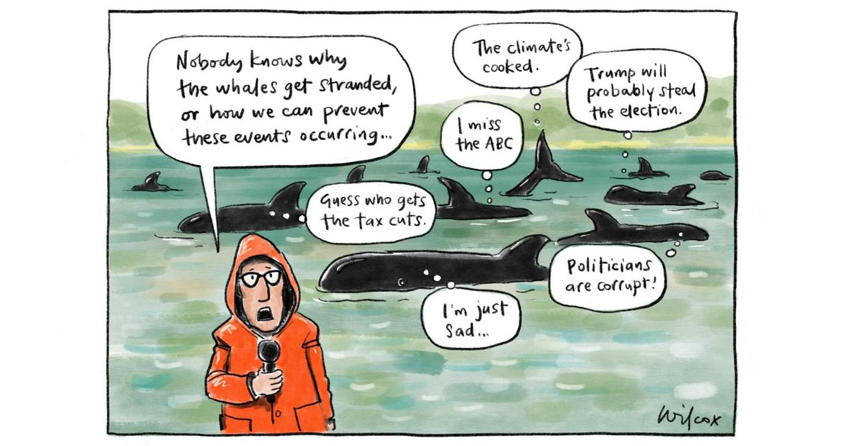 Today's editorial cartoon by @cathywilcox1
