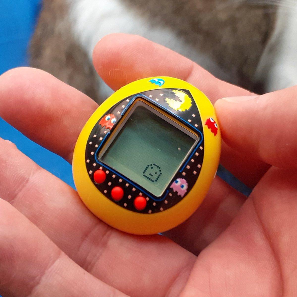 #Tamagotchi + #PacMan ? Pacmangotchi!! https://t.co/o3ql59M4iO