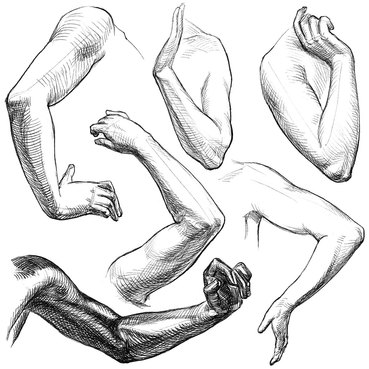 腕を曲げたときの三角形の空間。肘の頂点から引いた補助線は、肩〜手首間の二等分線。