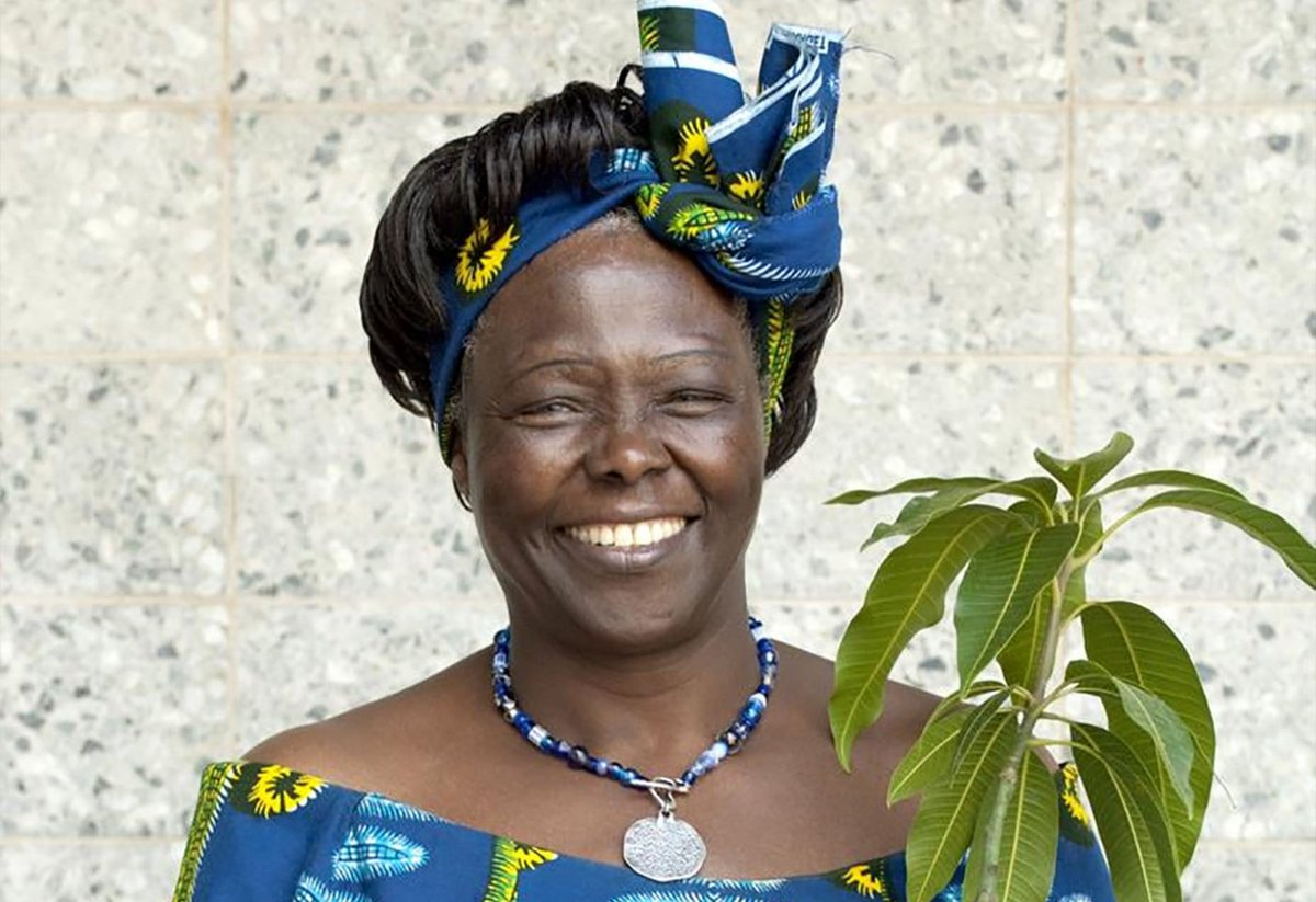 #WangariMaathai is an icon in life & death. She was First African Woman to get Nobel Prize for environmental work including protecting Uhuru Park from being converted to real estate hub. Through her Green Belt Movement,  #BeAHummingbird was born. She died on 25/9/2011.RIP Mama. https://t.co/2yDXtalhRq