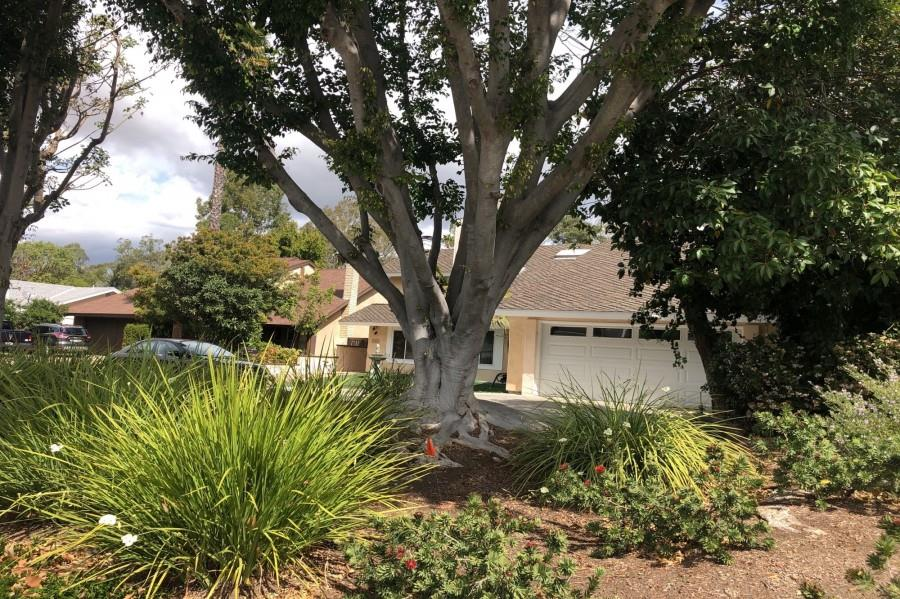 Foreclosure Auction - Lake Forest, CA 92630 Single Family Residence 5 Beds, 3 Baths, 2,810 sqft $530,000 (Est. Opening Bid)  Est. Market Value:$818,000 Visit https://t.co/MoKQbyFyn1 for details or call 949-630-0650 #foreclosures #realestateinvesting https://t.co/ExBTin9m7A