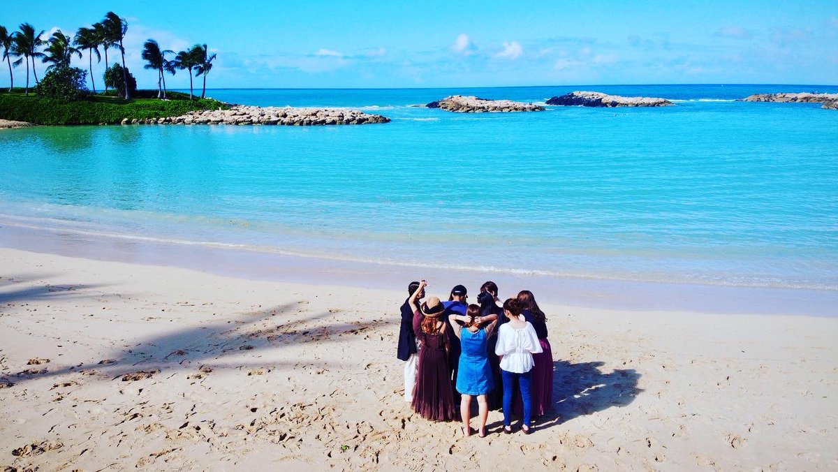 本日は、90人の感染者が出ました。ユナイテッドエアラインが、ハワイ入国前のテストプログラムを実施!  #ハワイ #hawaii #カワイイハワイハワイツアー  #コロナ #ハワイコロナ #ハワイ旅行 #ハワイツアー #ハワイチャーターツアー https://t.co/oMbSjwavpx
