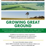 In the last few weeks we have seen some excellent examples of works funded through @NACC_NRM  projects. If you have started thinking about revegetation or next year's groundcover plantings then get in touch with @CallumJLove to discuss the Growing Great Ground project