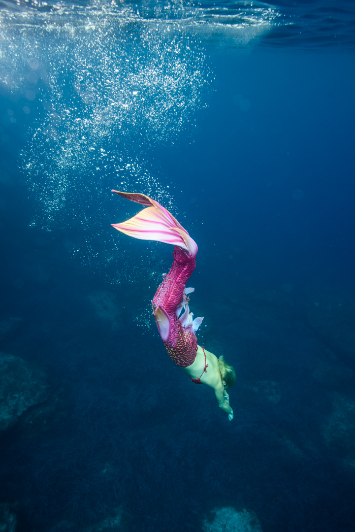 What about meeting a real life Mermaid?  Join Michelle on Michelle's Wellbeing at 1200 hrs BST today #crewlife #flightattendant https://t.co/c8L2ZaA49U