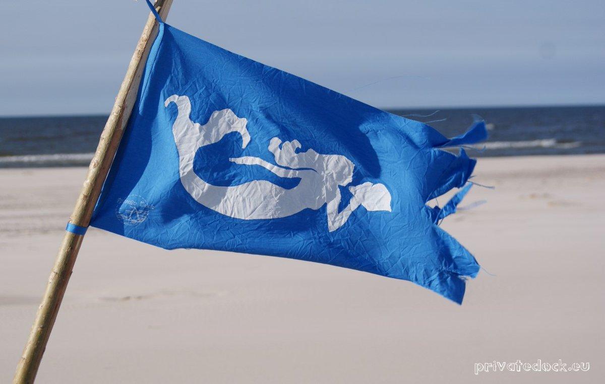 🌊🐚🐬❤️💦 Welcome Mermaids 💦❤️🐬🐚🌊 #sailing #sailor #sealovers #ocean #travel #coast #seaside #beachlife #beach #VisitSpain  #Spain #España  #CostaBlanca #playa  #mediterranean  #mediterraneansea  #Mediterráneo #blue #azul  #privatedock https://t.co/K7ypWf2Q2B https://t.co/bRGIFqKSYU
