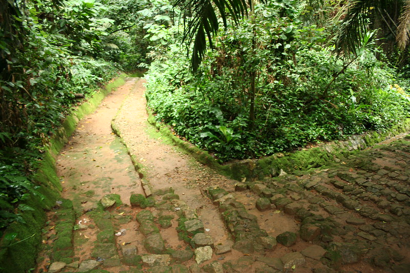 Botanical Gardens located in Entebbe answers by offering an excellent environment for relaxation, vacations,love for #nature and many more. #travelwithus #ugandacities #visituganda #ugandasafaris https://t.co/vzIX1Fmo6v https://t.co/bqwjhjWUfv https://t.co/yeQomBtf4z