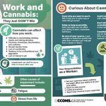 Image for the Tweet beginning: Guess what! Cannabis and work