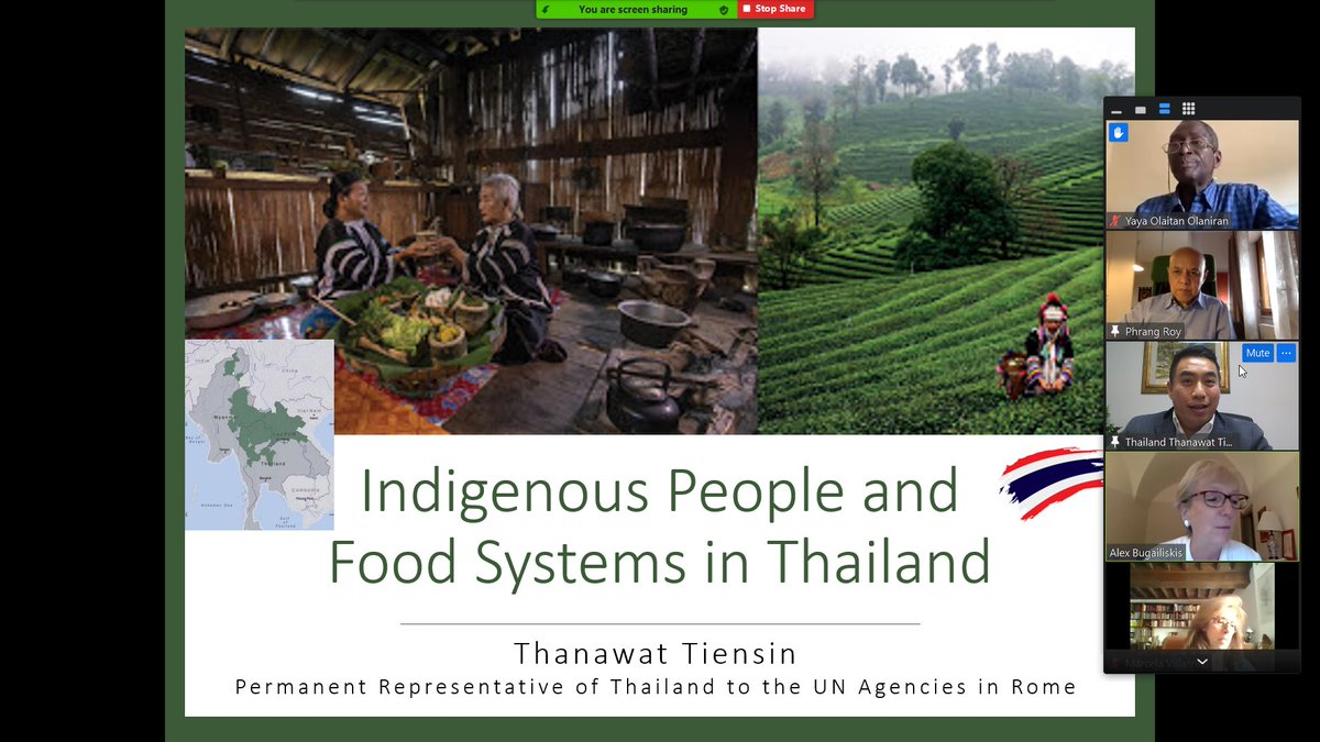 I was happy to participate in the 4th meeting of the Group of Friends on #IndigenousPeoples in Rome. I was very pleased to share the works on #IndigenousPeoples and #FoodSystems in Thailand. #foodsecurity #Nutrition #HumanRight #PovertyReduction https://t.co/bHBcJtNPIU