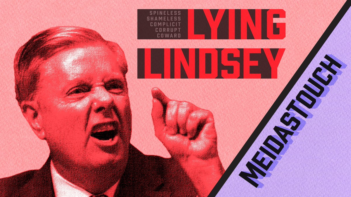 📺 NEW VIDEO Lindsey Graham is not going to want you to retweet this #LyingLindsey