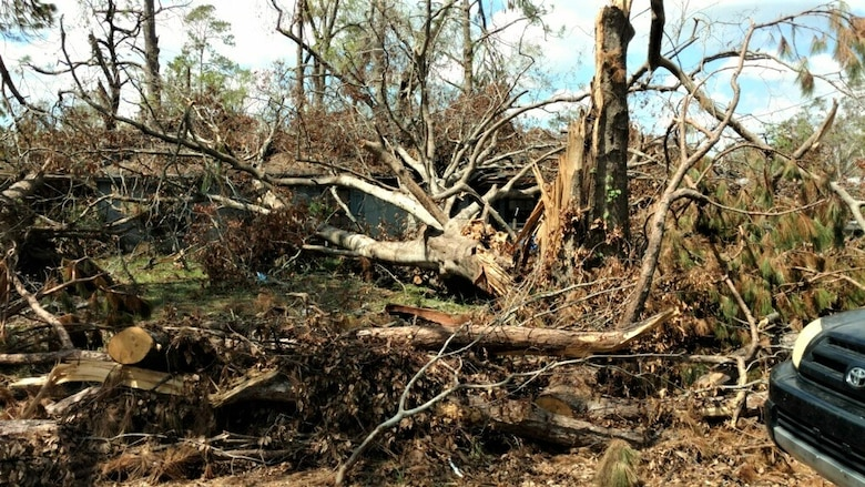The U.S. Army Corps of Engineers supports southwest Louisiana with Hurricane #Laura recovery efforts in more ways than one. Still, the primary mission remains to provide temporary roofing for homeowners until more permanent repairs can be made. mvm.usace.army.mil/Media/News-Sto…