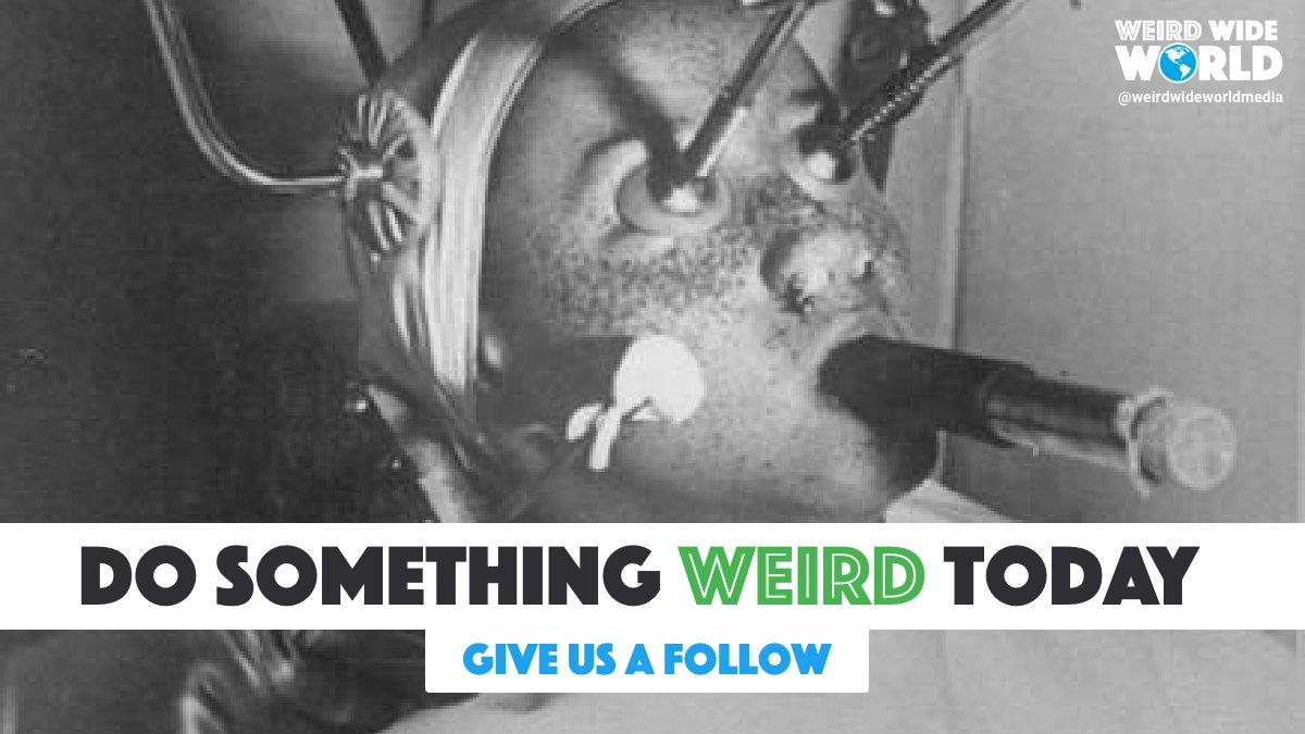 Forget normal! Become weird!   #WeirdWideWorld #FollowFriday #DoSomethingWeird #Uplift #Unknown #Mystery #Unexplained #Paranormal #WeirdScience https://t.co/NRJzWk9GnL